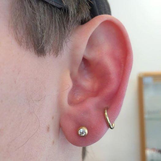 helix piercing segmentring cartilage brusk ørekant