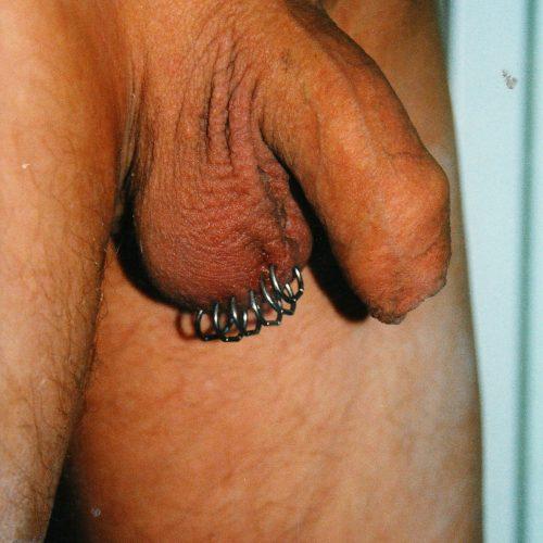 scrotum pung piercing haffata genitial intimate male