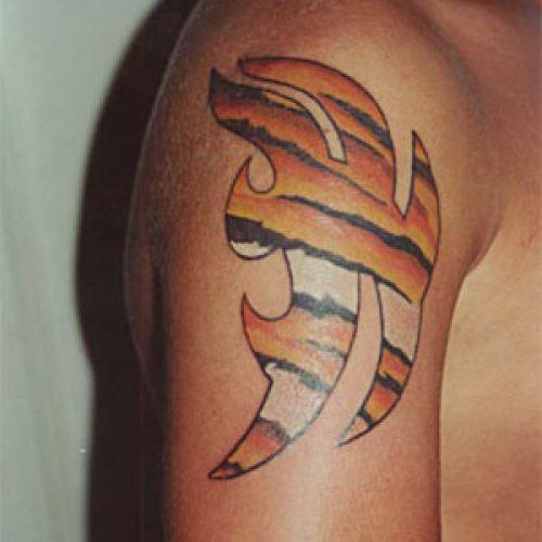 Tribal tatovering tattoo tiger skin